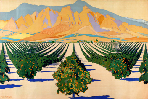 Plakat South African Orange Orchards