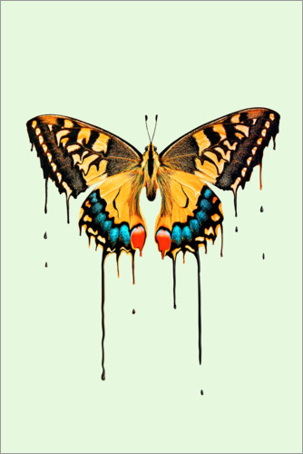Plakat Melting butterfly