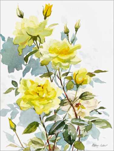 Plakat Yellow roses, watercolor