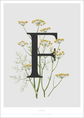 Plakat F is for Fennel