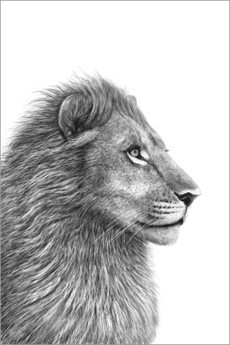 Plakat The Lion