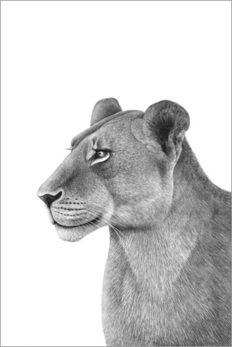 Plakat The Lioness
