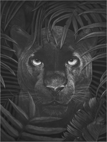 Plakat Panther in the jungle