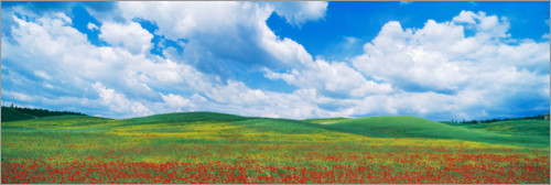 Plakat The green hills of Tuscany