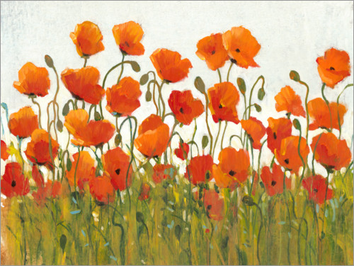 Plakat Rows of Poppies I