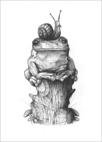 Plakat The frog and the snail, black and white