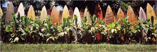 Plakat A fence made of surfboards