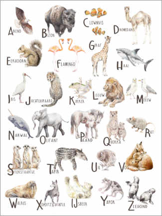Obraz na płótnie  Animals A to Z Alphabet (Dutch) - Wandering Laur