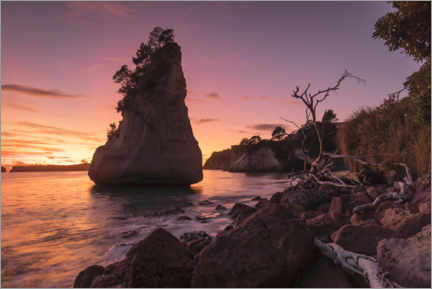 Plakat Cathedral Cove at sunrise