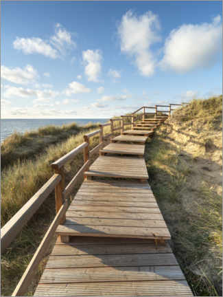 Obraz na płótnie  Wooden walkway on Sylt near Kampen - Jan Christopher Becke