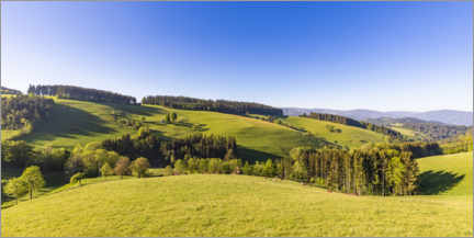 Plakat Spring at St. Peter in the Black Forest