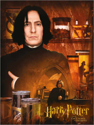 Plakat Severus Snape and the Chamber of Secrets