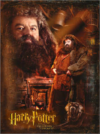 Plakat Rubeus Hagrid and the Chamber of Secrets