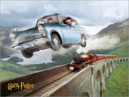 Plakat  Harry and Ron - The Chamber of Secrets