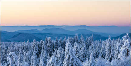 Plakat Winter in the Black Forest National Park