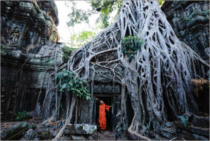 Plakat Temple in the jungle, Angkor