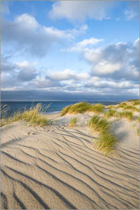 Obraz na PCV  Dunes on the North Sea beach - Jan Christopher Becke