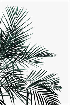 Plakat Palm tree in the wind