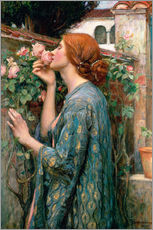 Gallery print  Zapach róży - John William Waterhouse