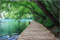 Gallery print  Plitvice Lakes National Park Boardwalk - Renate Knapp