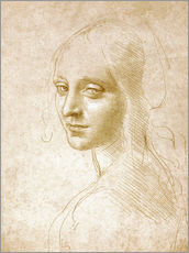 Naklejka na ścianę  Study of an angel face of the Virgin of the Rocks - Leonardo da Vinci