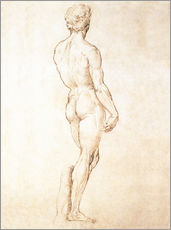 Gallery print  Study of David - Michelangelo