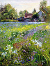 Gallery print  Cottage in the country - Timothy Easton