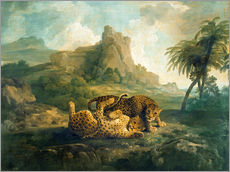 Gallery print  Leopards at Play - George Stubbs
