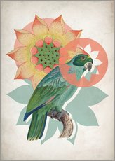 Gallery print  The happy lotus - Mandy Reinmuth