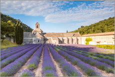Gallery print  Famous Senanque abbey with lavender field, Provence, France - Matteo Colombo