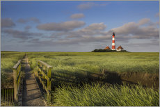 Gallery print  Lighthouse in the salt marshes on the North Coast
