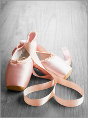 Gallery print  pink ballet shoes
