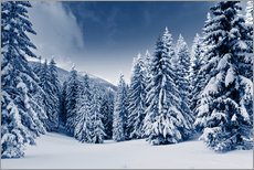 Gallery print  Winter landscape with snow covered trees