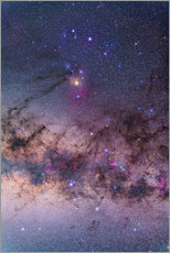 Gallery print  Scorpius with parts of Lupus and Ara regions of the southern Milky Way. - Alan Dyer