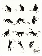 Gallery print  The cat and the frog - Théophile-Alexandre Steinlen