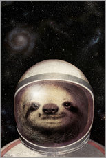 Gallery print  Space Sloth - Eric Fan