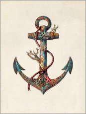 Gallery print  Reef anchor - Terry Fan