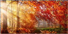 Plakat  Forest in Autumn - Art Couture