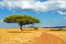Plakat A lonely tree in Africa