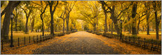 Plakat Central Park in New York City, USA