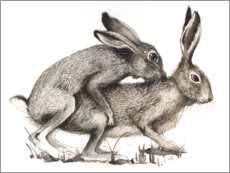 Obraz na drewnie  Couples of Hares - Ilona Schadauer