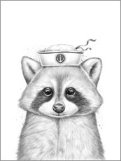 Plakat Raccoon sailor