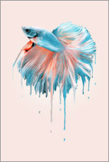 Plakat Melting fish