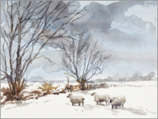 Plakat Sheep in the Snow