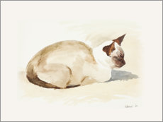 Plakat Resting kitten, watercolor