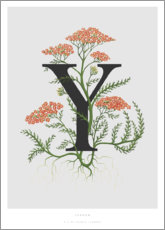 Plakat Y is for Yarrow