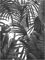 Plakat Tropical jungle in black and white