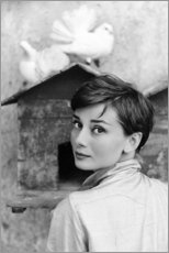 Obraz na drewnie  Audrey Hepburn at the dovecote - Celebrity Collection