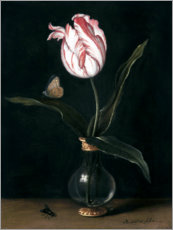 Obraz na drewnie  The 'summer beautiful' tulip - Balthasar van der Ast