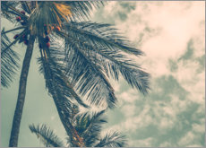Plakat  Palm trees in summer